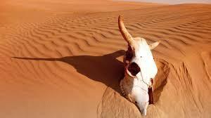 TEM_desert and skull